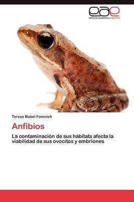 Anfibios (Paperback)