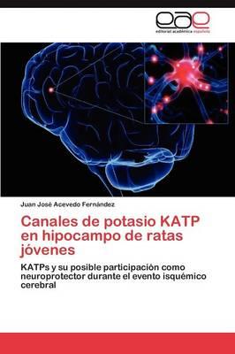 Canales de Potasio Katp En Hipocampo de Ratas Jovenes (Paperback)