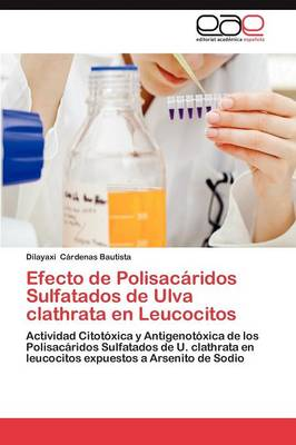 Efecto de Polisacaridos Sulfatados de Ulva Clathrata En Leucocitos (Paperback)
