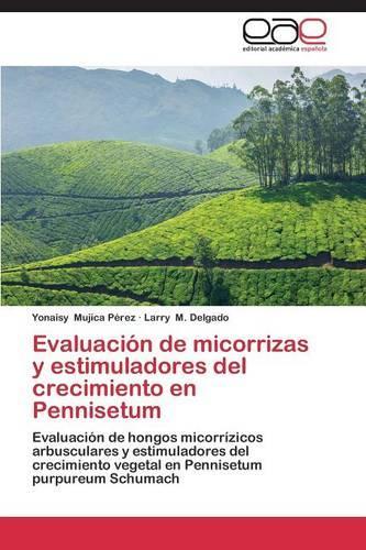 Evaluacion de Micorrizas y Estimuladores del Crecimiento En Pennisetum (Paperback)