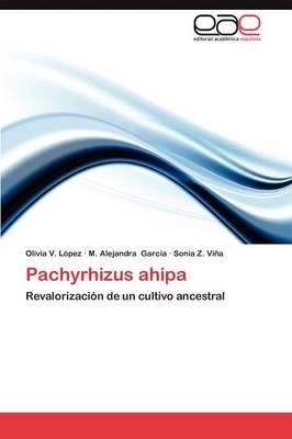Pachyrhizus Ahipa (Paperback)