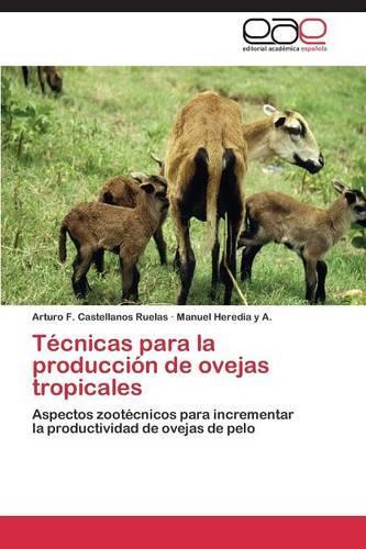 Tecnicas Para La Produccion de Ovejas Tropicales (Paperback)