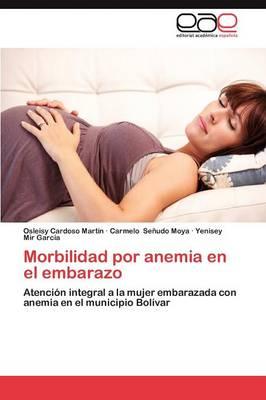 Morbilidad Por Anemia En El Embarazo (Paperback)