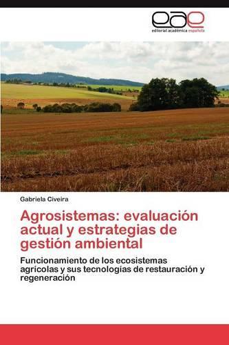 Agrosistemas: Evaluacion Actual y Estrategias de Gestion Ambiental (Paperback)