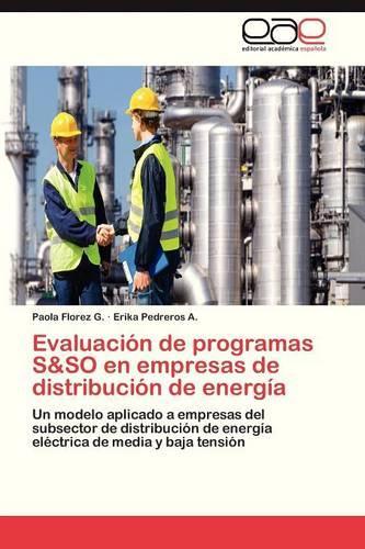Evaluacion de Programas S&so En Empresas de Distribucion de Energia (Paperback)