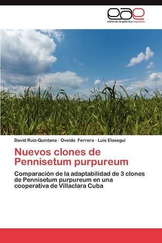 Nuevos Clones de Pennisetum Purpureum (Paperback)