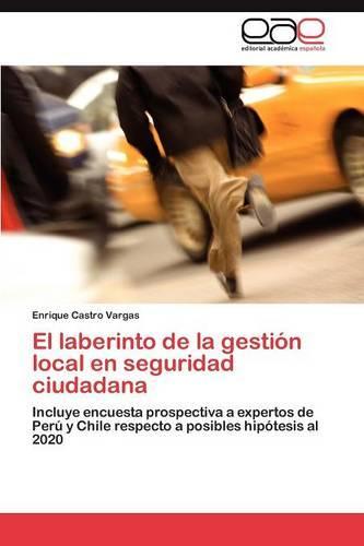 El Laberinto de La Gestion Local En Seguridad Ciudadana (Paperback)