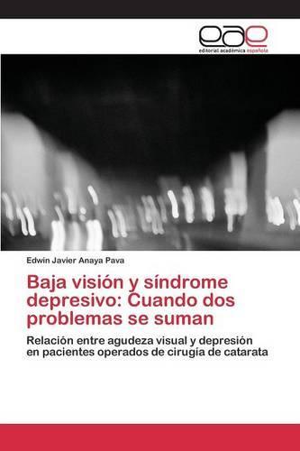 Baja Vision y Sindrome Depresivo: Cuando DOS Problemas Se Suman (Paperback)