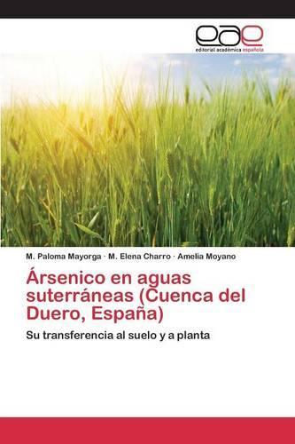 Arsenico En Aguas Suterraneas (Cuenca del Duero, Espana) (Paperback)