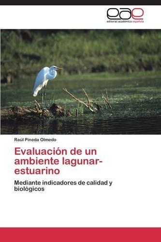 Evaluacion de Un Ambiente Lagunar- Estuarino (Paperback)