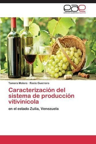 Caracterizacion del Sistema de Produccion Vitivinicola (Paperback)