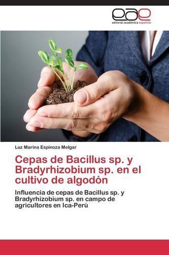 Cepas de Bacillus Sp. y Bradyrhizobium Sp. En El Cultivo de Algodon (Paperback)