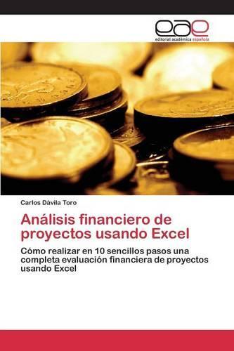 Analisis Financiero de Proyectos Usando Excel (Paperback)