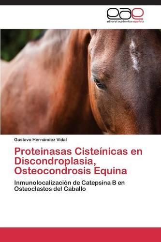 Proteinasas Cisteinicas En Discondroplasia, Osteocondrosis Equina (Paperback)