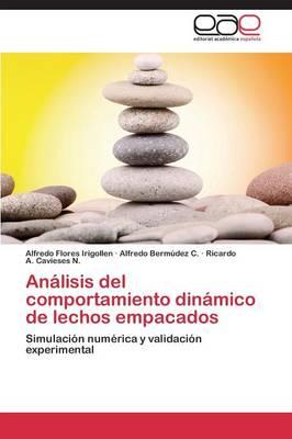 Analisis del Comportamiento Dinamico de Lechos Empacados (Paperback)