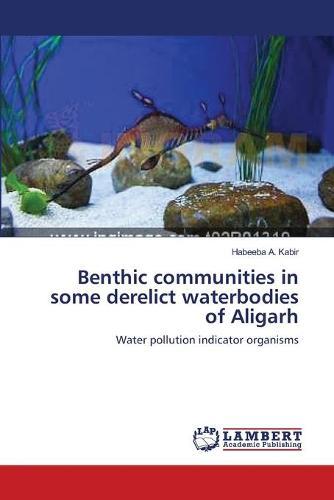 Benthic Communities in Some Derelict Waterbodies of Aligarh (Paperback)