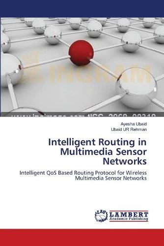 Intelligent Routing in Multimedia Sensor Networks (Paperback)