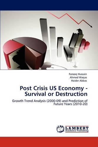 Post Crisis Us Economy - Survival or Destruction (Paperback)