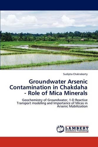 Groundwater Arsenic Contamination in Chakdaha - Role of Mica Minerals (Paperback)