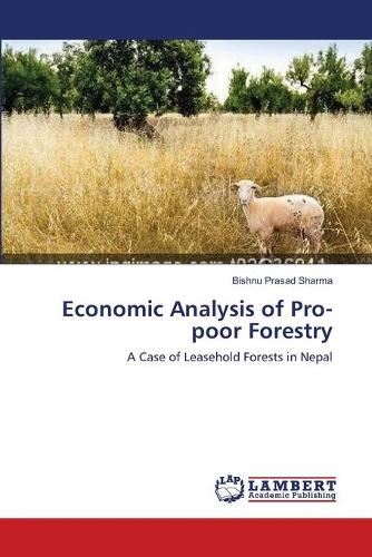 Economic Analysis of Pro-Poor Forestry (Paperback)