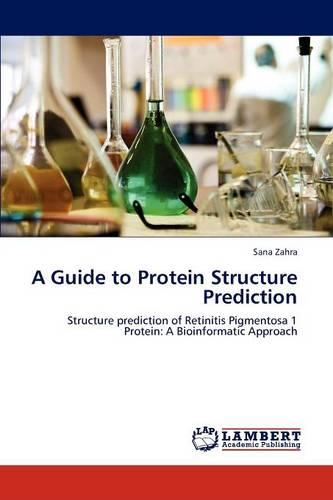 A Guide to Protein Structure Prediction (Paperback)