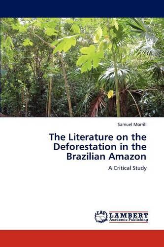 The Literature on the Deforestation in the Brazilian Amazon (Paperback)