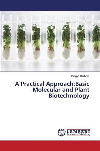 A Practical Approach: Basic Molecular and Plant Biotechnology (Paperback)
