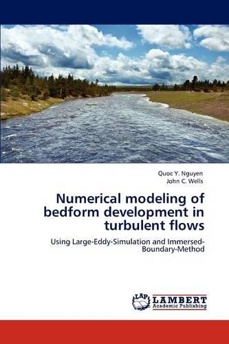 Numerical Modeling of Bedform Development in Turbulent Flows (Paperback)