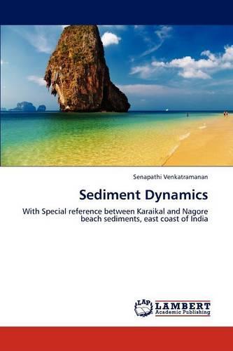 Sediment Dynamics (Paperback)