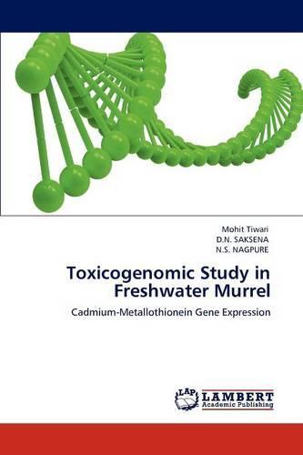 Toxicogenomic Study in Freshwater Murrel (Paperback)