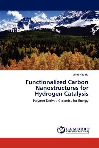 Functionalized Carbon Nanostructures for Hydrogen Catalysis (Paperback)