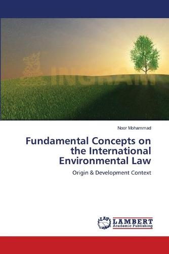 Fundamental Concepts on the International Environmental Law (Paperback)