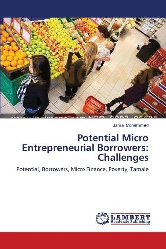 Potential Micro Entrepreneurial Borrowers: Challenges (Paperback)