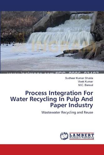 Process Integration for Water Recycling in Pulp and Paper Industry (Paperback)