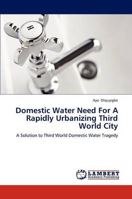 Domestic Water Need for a Rapidly Urbanizing Third World City (Paperback)