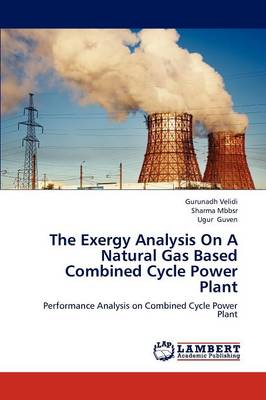 The Exergy Analysis on a Natural Gas Based Combined Cycle Power Plant (Paperback)
