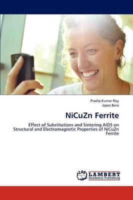 Nicuzn Ferrite (Paperback)