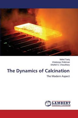 The Dynamics of Calcination (Paperback)