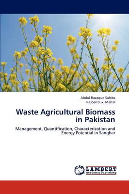 Waste Agricultural Biomass in Pakistan (Paperback)