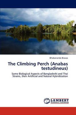 The Climbing Perch (Anabas Testudineus) (Paperback)