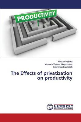 The Effects of Privatization on Productivity (Paperback)