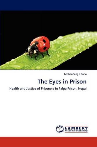 The Eyes in Prison (Paperback)