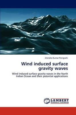 Wind Induced Surface Gravity Waves (Paperback)
