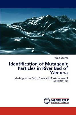 Identification of Mutagenic Particles in River Bed of Yamuna (Paperback)