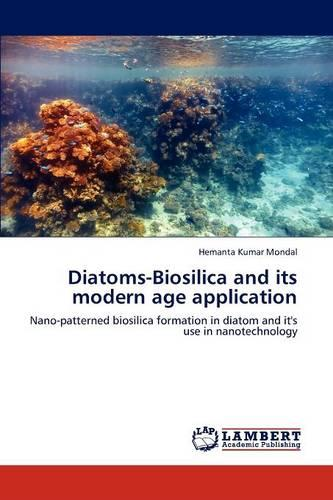 Diatoms-Biosilica and Its Modern Age Application (Paperback)