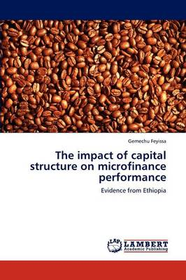 The Impact of Capital Structure on Microfinance Performance (Paperback)