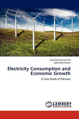 Electricity Consumption and Economic Growth (Paperback)