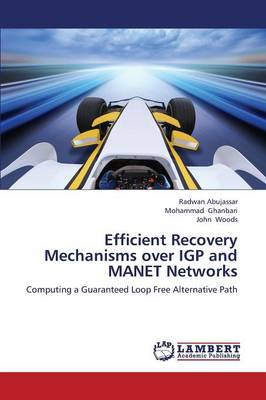 Efficient Recovery Mechanisms Over Igp and Manet Networks (Paperback)