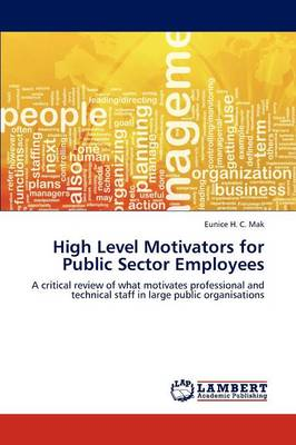 High Level Motivators for Public Sector Employees (Paperback)