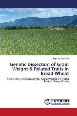 Genetic Dissection of Grain Weight & Related Traits in Bread Wheat (Paperback)